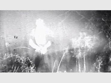 Stan Brakhage. Blue Moses. Película, 1962