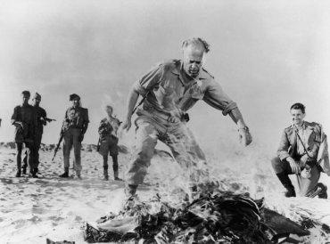 Nicholas Ray. Amarga victoria. Película, 1957