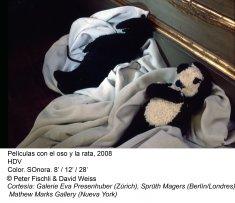Peter Fischli / David Weiss. ¿Son los animales personas?(imagen 01)