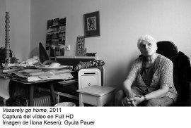 Andreas Fogarasi. La ciudad de color / Vasarely Go Home(imagen 02)