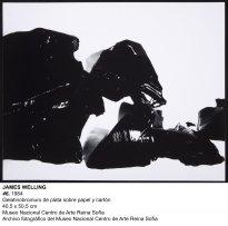 James Welling, 46, 1984