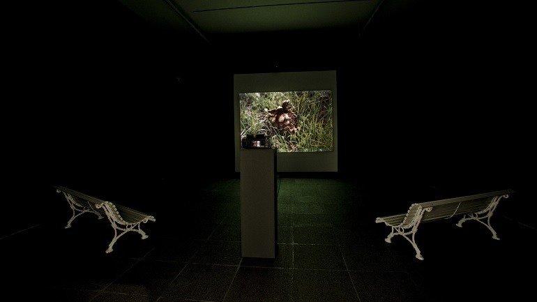Vista de sala de la exposición. Leonardo Cantero. La dehesa del hoyo, 2008