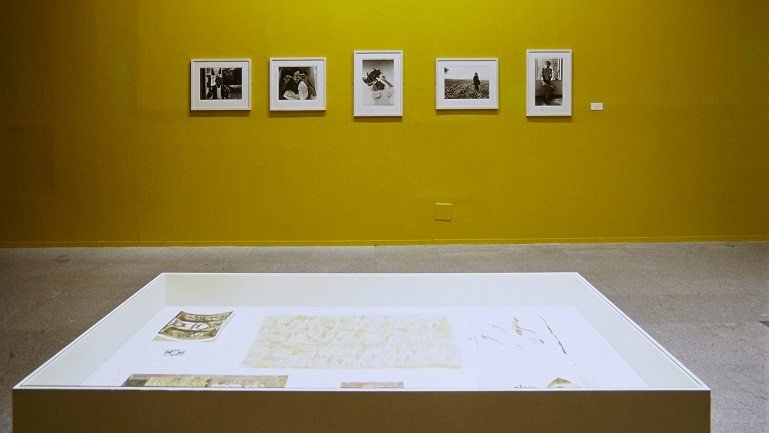 Exhibition view. Francisco Toledo, 2000